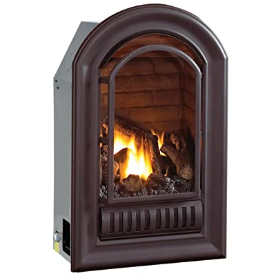 HearthSense A-Series Natural Gas Ventless Fireplace Insert - 20,000 BTU, Millivolt Control, Model ANI