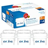 Aqua Optima Evolve 12 month pack, 6 x 60 day water filters - Fit *BRITA Maxtra (not *Maxtra+) appliances - EVD602
