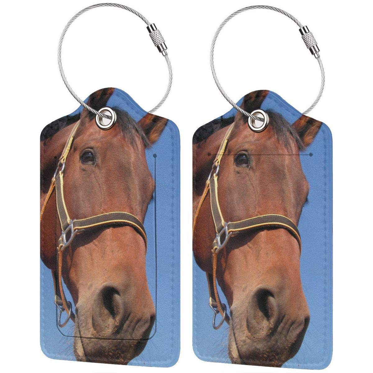 Watercolor Horse Luggage Tags With Full Back Privacy Cover W//Steel Loops