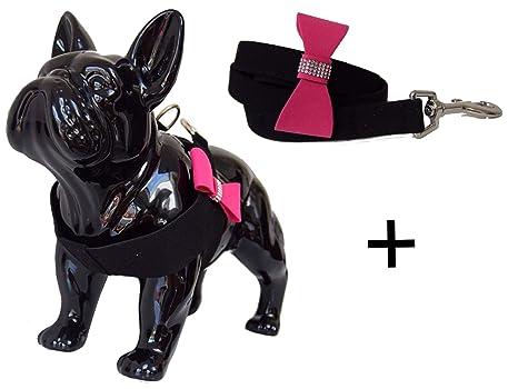 Lushpetz Bowtie - Arnés para perro con correa a juego en color ...