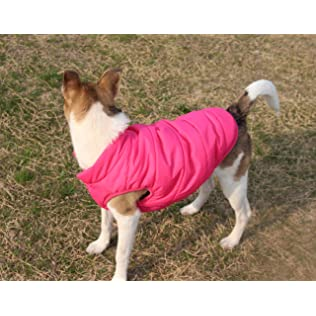 JoyDaog Two Layers Fleece Lined Winter Coat for Small Dogs