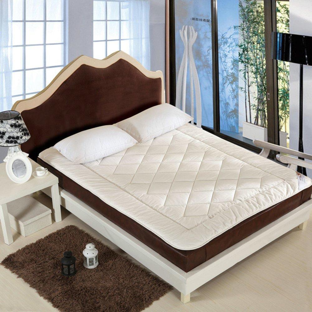 DHWJ WCCT Comfort mattress,Single double full cotton mat,Tatami mat-C 120x200cm(47x79inch)