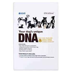 Dog DNA - Canine Breed Identification Test