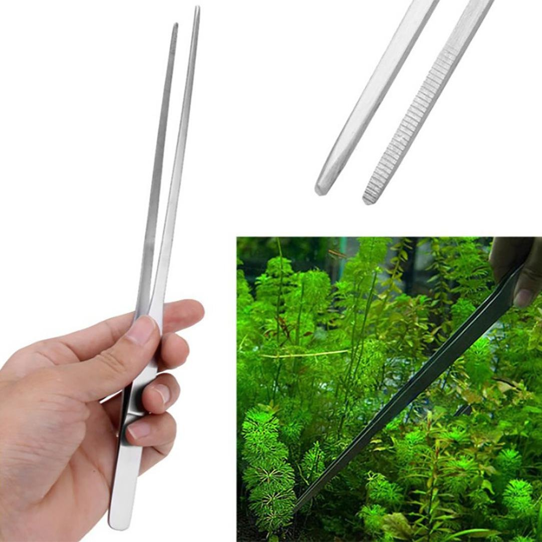 Amazon.com : Vacally Stainless Steel Curved Aquarium Tweezers Aquarium Plant Shrimp Reef Fish Tank Plant Grass Cutting Straight bending Head (Straigh ...