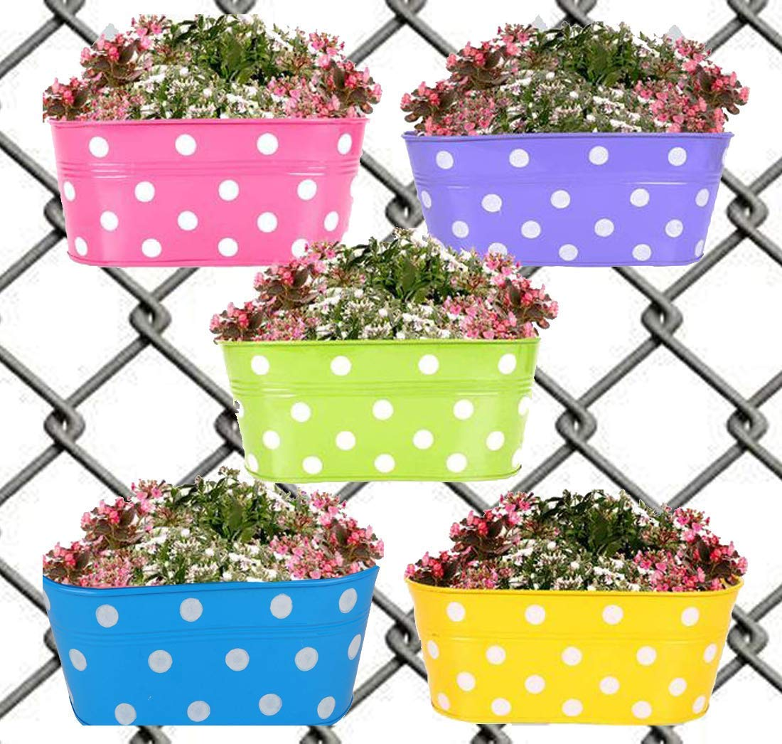 Collectible India Metal Dotted Oval Balcony Railing Planters Hanging Flower Basket Pot Garden Wall Fence(Purple, 1 Pcs) product image
