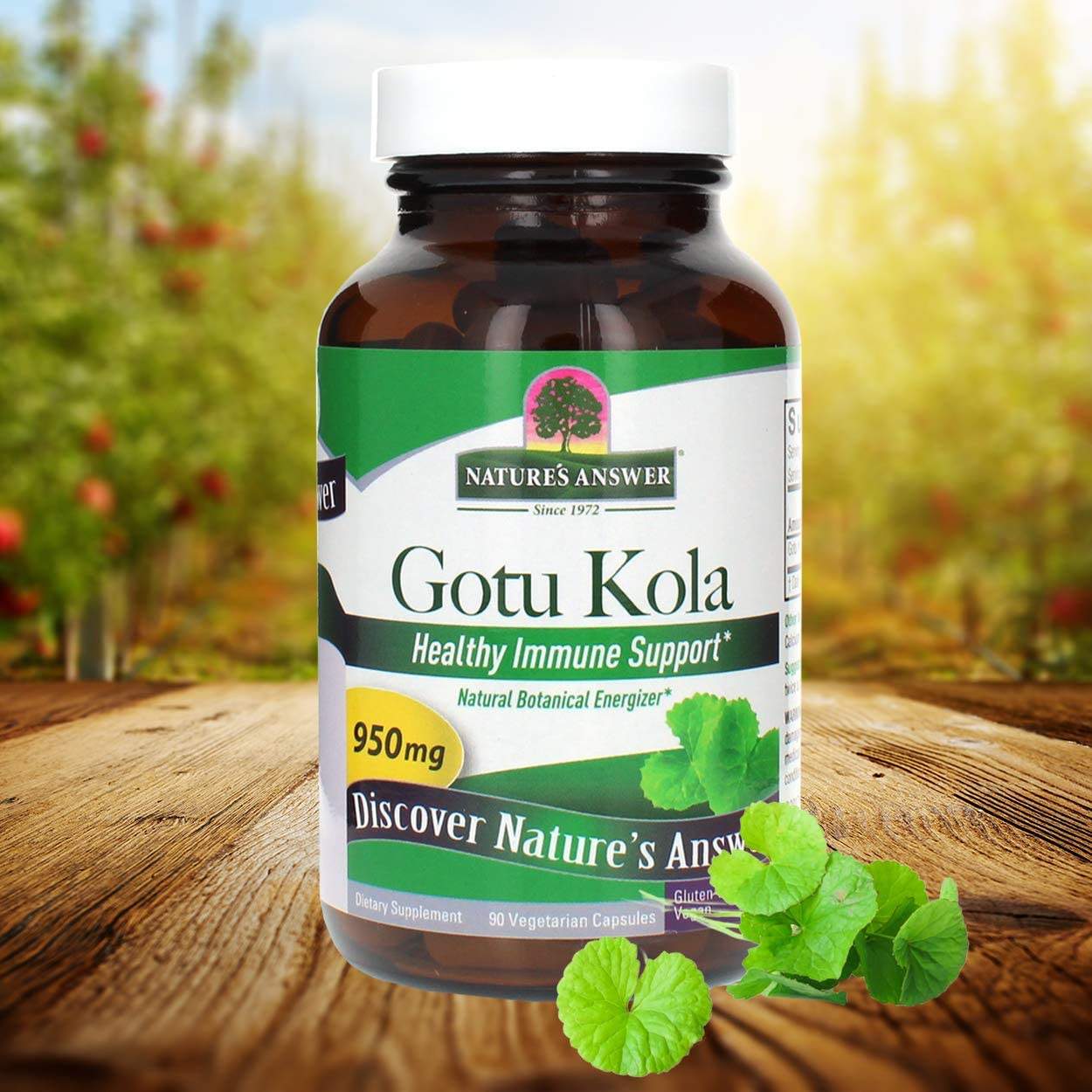 Nature's Answer Gotu Kola | Dietary Supplement | Supports a Healthy Immune System | Made in the USA | Gluten-Free, Vegan &  Vegetarian Capsules 60ct