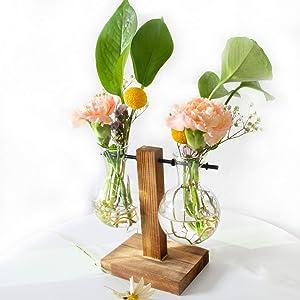 KABB Glass Terrarium Planter, Desktop Glass Planter Bulb Vase with Retro Solid Wooden Stand & Metal Swivel Holder, Rustic Elegant Desk Accessories for Garden Home Office Desk Decor (2 Bulb Balance)