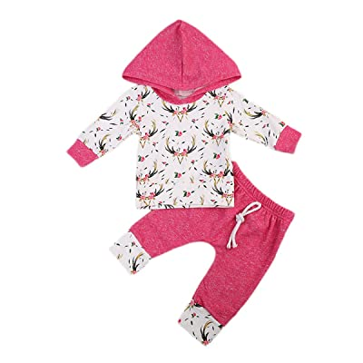 AnneBella Newborn Baby Girls Sweater Hooded Deer Tops Floral Pants Clothes Pink