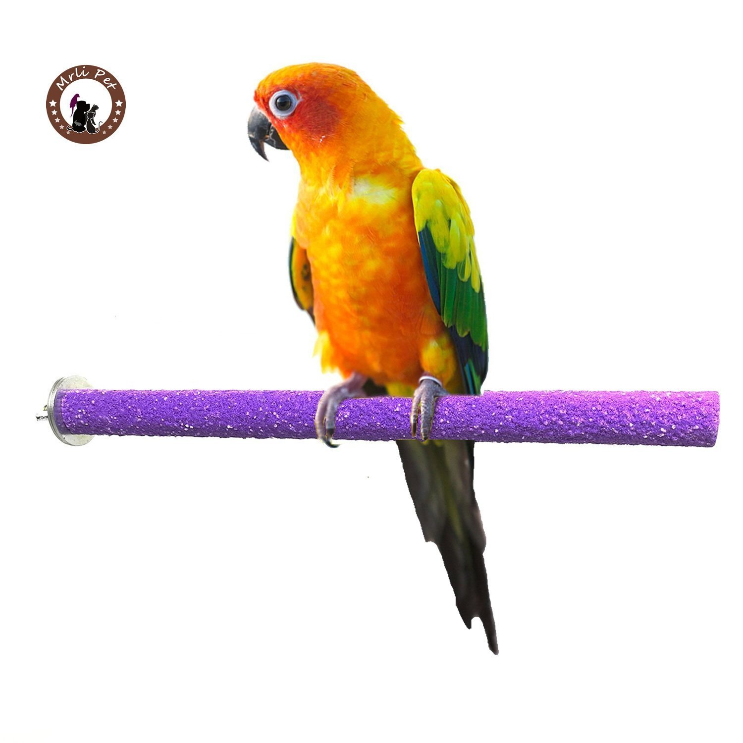 Mrli Pet Bird Safety Perch Rough-surfaced Nature Wood Stand Branch for Parrot Macaw African Greys Budgies Cockatoo Parakeet Cockatiel Conure Lovebirds Helps Keep Nails and Beaks Colors Vary (M)