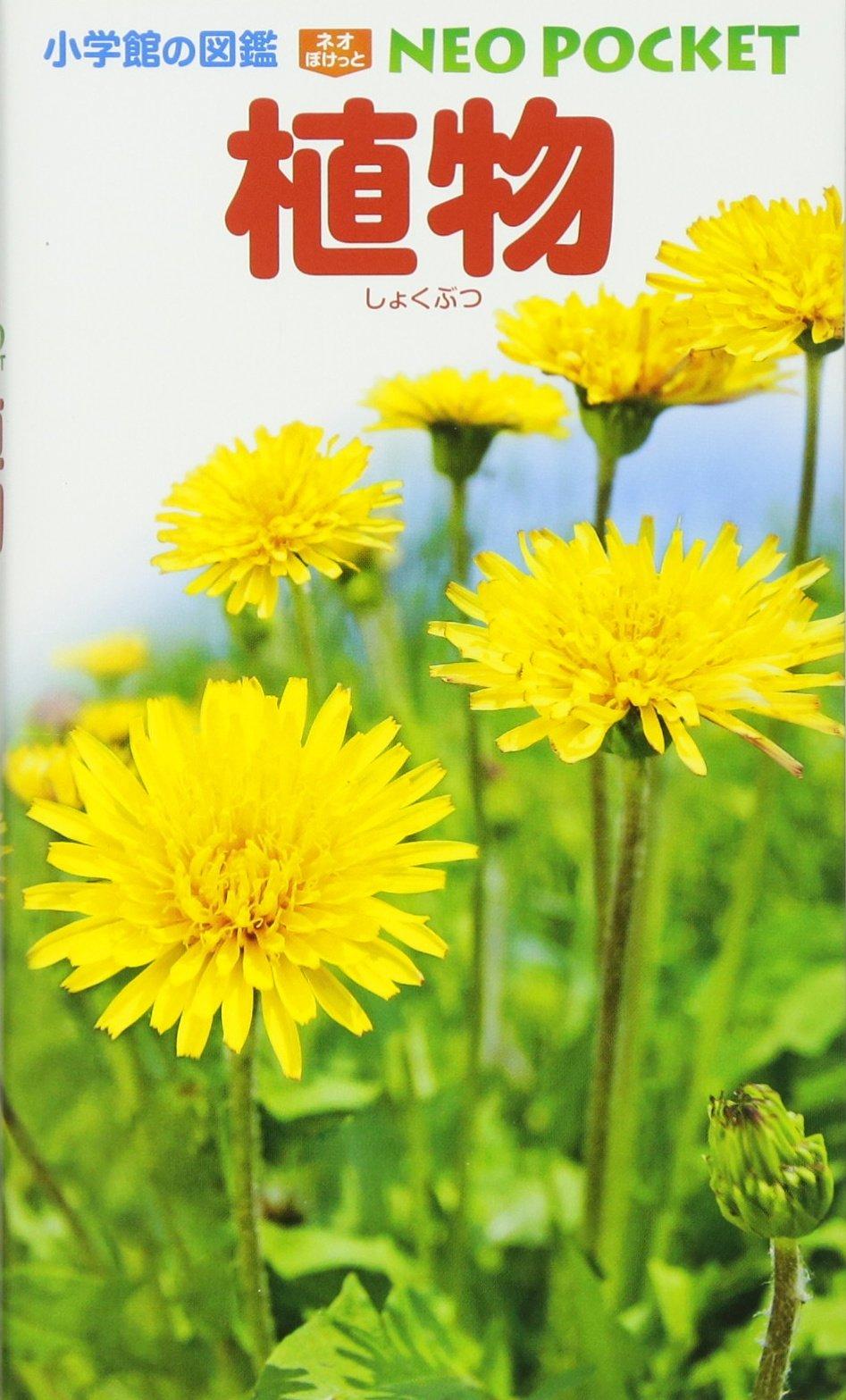 植物(小学館の図鑑 NEOポケット)