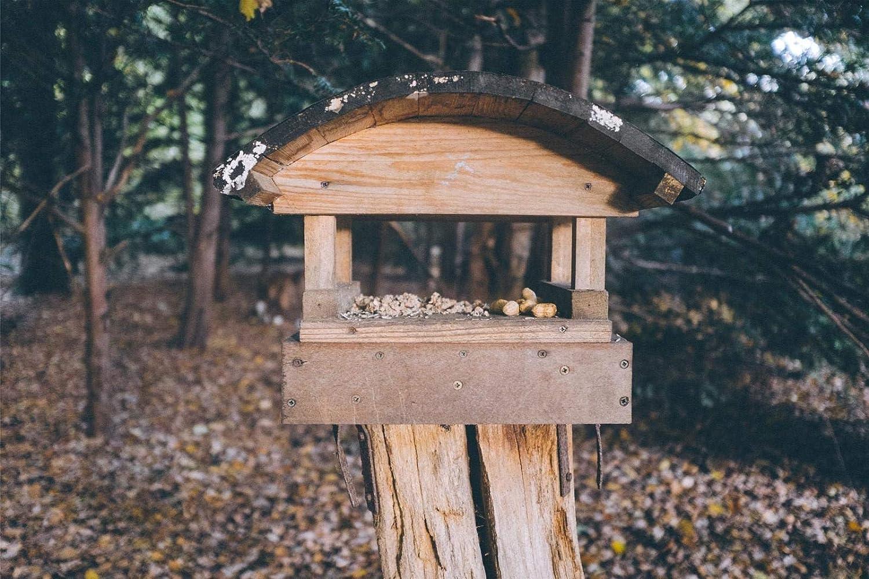 Comedero para Pájaros 1,000 Piezas De Rompecabezas Juguetes Educativos para Niños Desafían La Capacidad Intelectual
