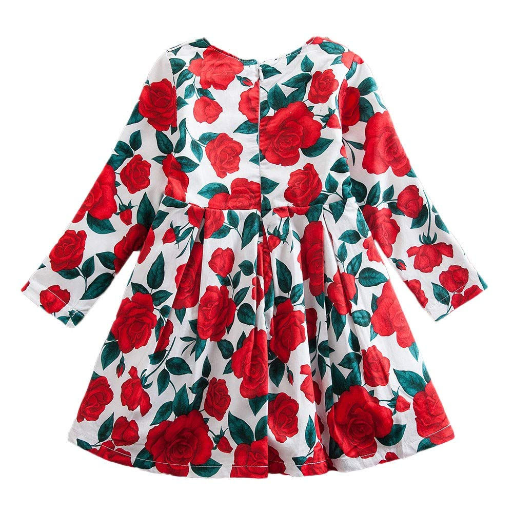 Vestiti della Ragazza della Chiusura Lampo del Vestito da Partito della Stampa Floreale dei Bambini delle Neonate dei Bambini, YanHoo Abito a Maniche Lunghe con Stampa a Rosa per Bambini (24M-7T)