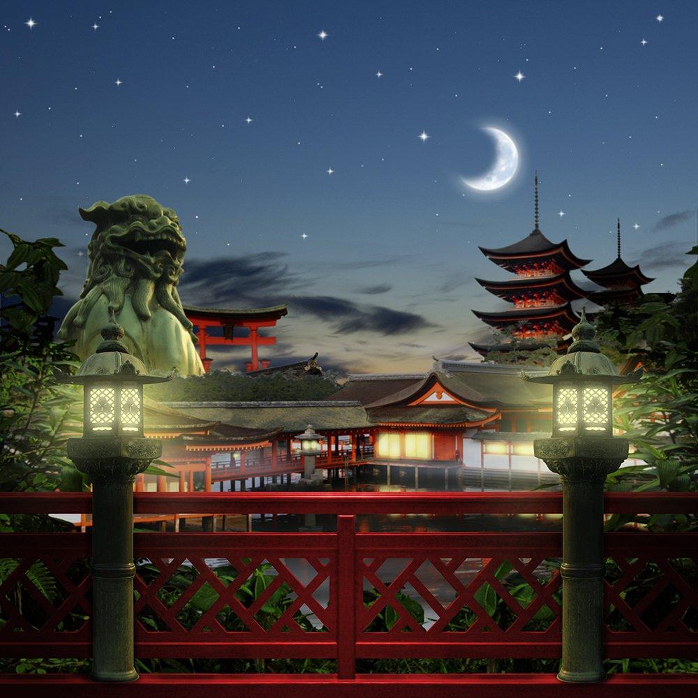 写真バックドロップ – Lost City in Moonlight – 10 x 10 ft。 – 高品質シームレスなファブリック   B00OJQJ8RM