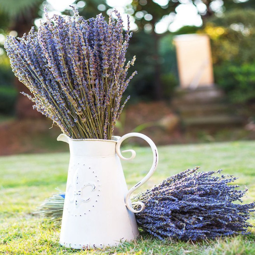 Lavender Bundles- with 200 PCS Lavender Buds- Wedding Decoration, House Decoration, Unique Present - 100 Percent Pure Dried Lavender ... by Lna Aoht