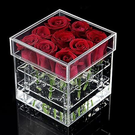 Caja para macetas con forma de rosa, titular de agua, caja de regalo hecha a mano, jarrón de clavel, maquillaje transparente acrílico, organizador de cosméticos, estuche de almacenamiento(9 orificios): Amazon.es: Hogar