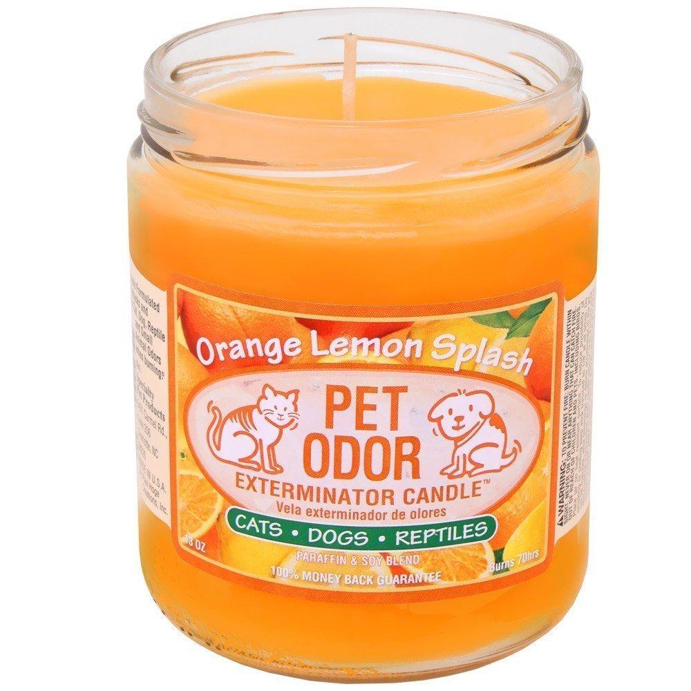 Pet Odor Exterminator Candle Orange Lemon Splash