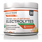 Ground-Based Nutrition Certified Organic Electrolyte Powder, 100% Plant-Based Hydration Formula: Rehydrate & Recover Faster from Hard Workouts, Delicious Pineapple Coconut Flavor, No Added Sugar