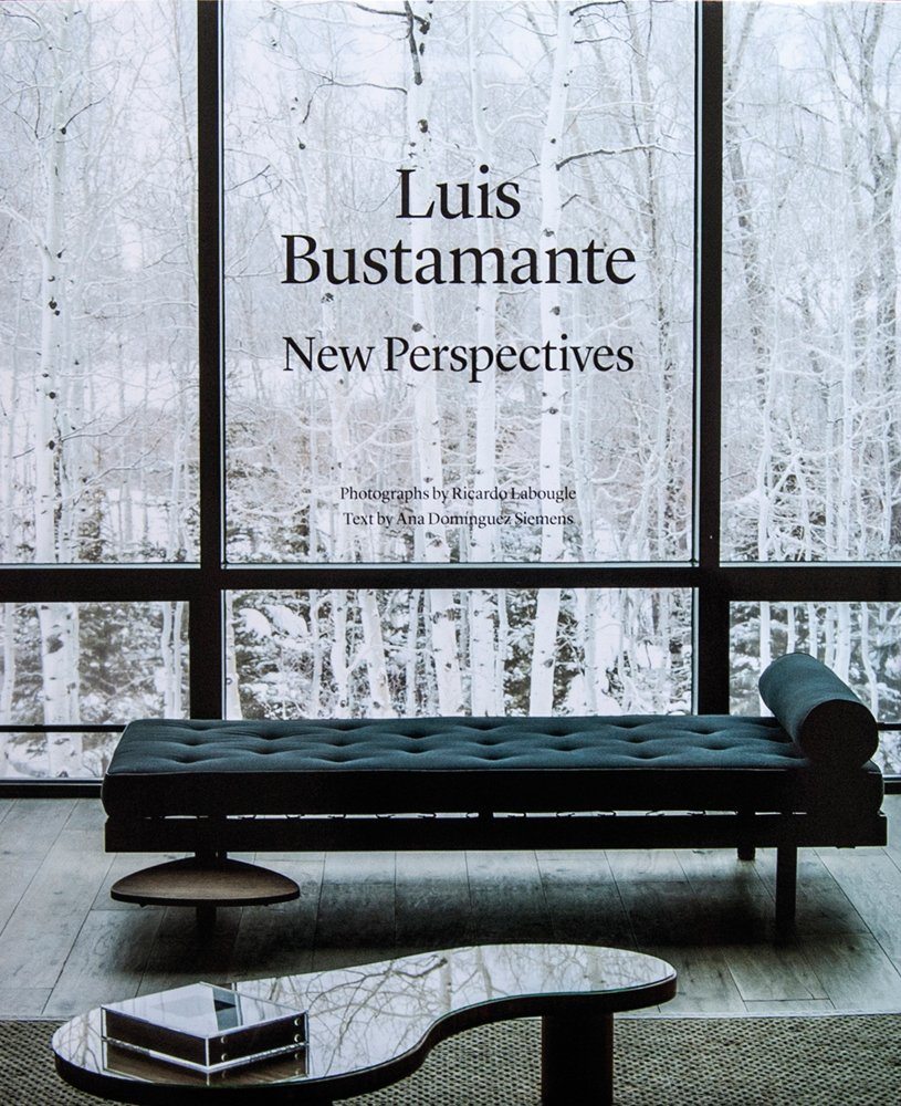 Luis Bustamante: New Perspectives