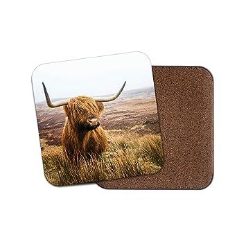 Amazon.com: Funny Highland Cow Coaster - Cattle Scotland ...