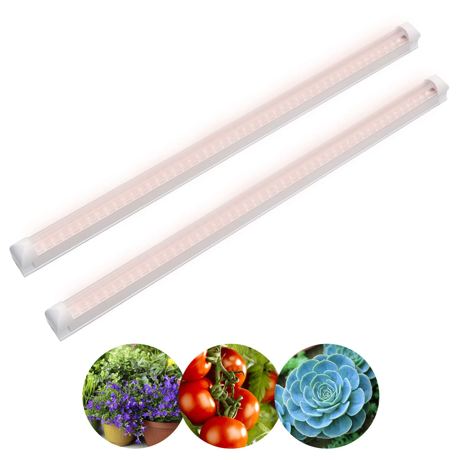 led Plant Grow Light, 2 Pack, 18W, 4ft T8 Tube Light Grower, 230V, Full Spectrum Grow Lamp for Indoor Plants, Growing Plant, Hydroponics Greenhouse Plant, Grow Shelf, Easy Installation [Energy Class A++] Ankishi