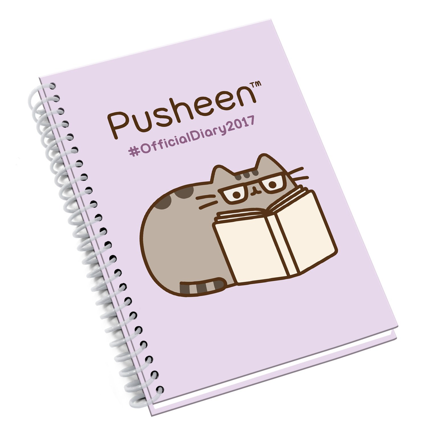 Pusheen Official 2017 Diary (A5): Amazon.es: Danilo: Libros ...
