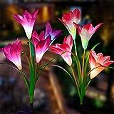 Doingart Outdoor Solar Garden Lights - Upgraded Solar Flower Lights, Multi-Color Changing Lily Flower Lights for Patio,Yard D