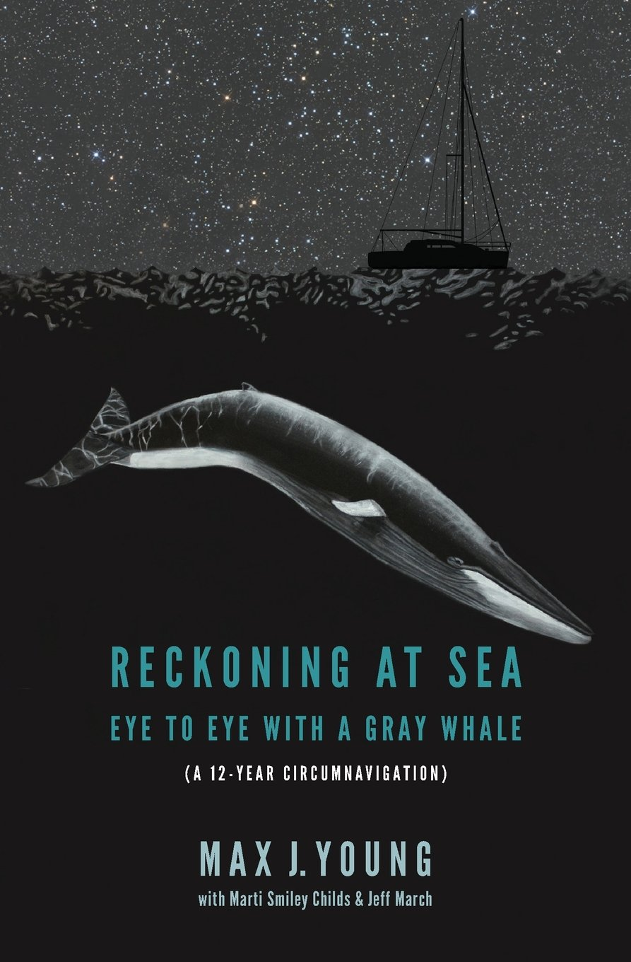 Reckoning at Sea: Eye to Eye with a Gray Whale