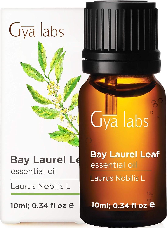 Aceite esencial de laurel - Un toque calmante para la respiración problemática (10 ml) - Aceite de laurel 100% puro de grado terapéutico