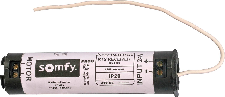 somfy R/écepteur sans Fil IO 1822609 1 pc s Izymo