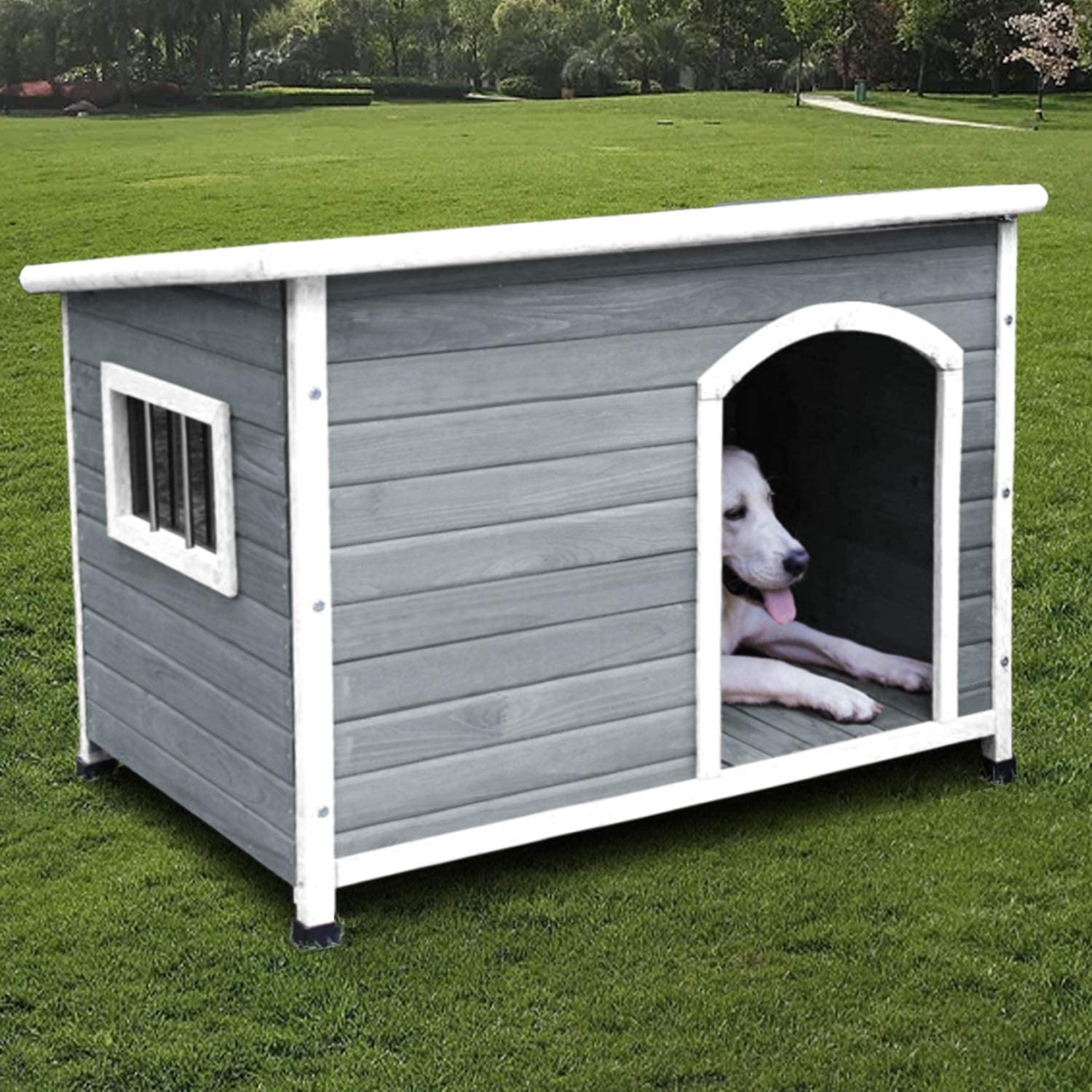 Amazon.com : ROCKEVER Dog Houses for Small Dogs and Puppies Outdoor Wood  Weatherproof Outside Wooden Puppy Houses Insulated Light Grey : Pet Supplies