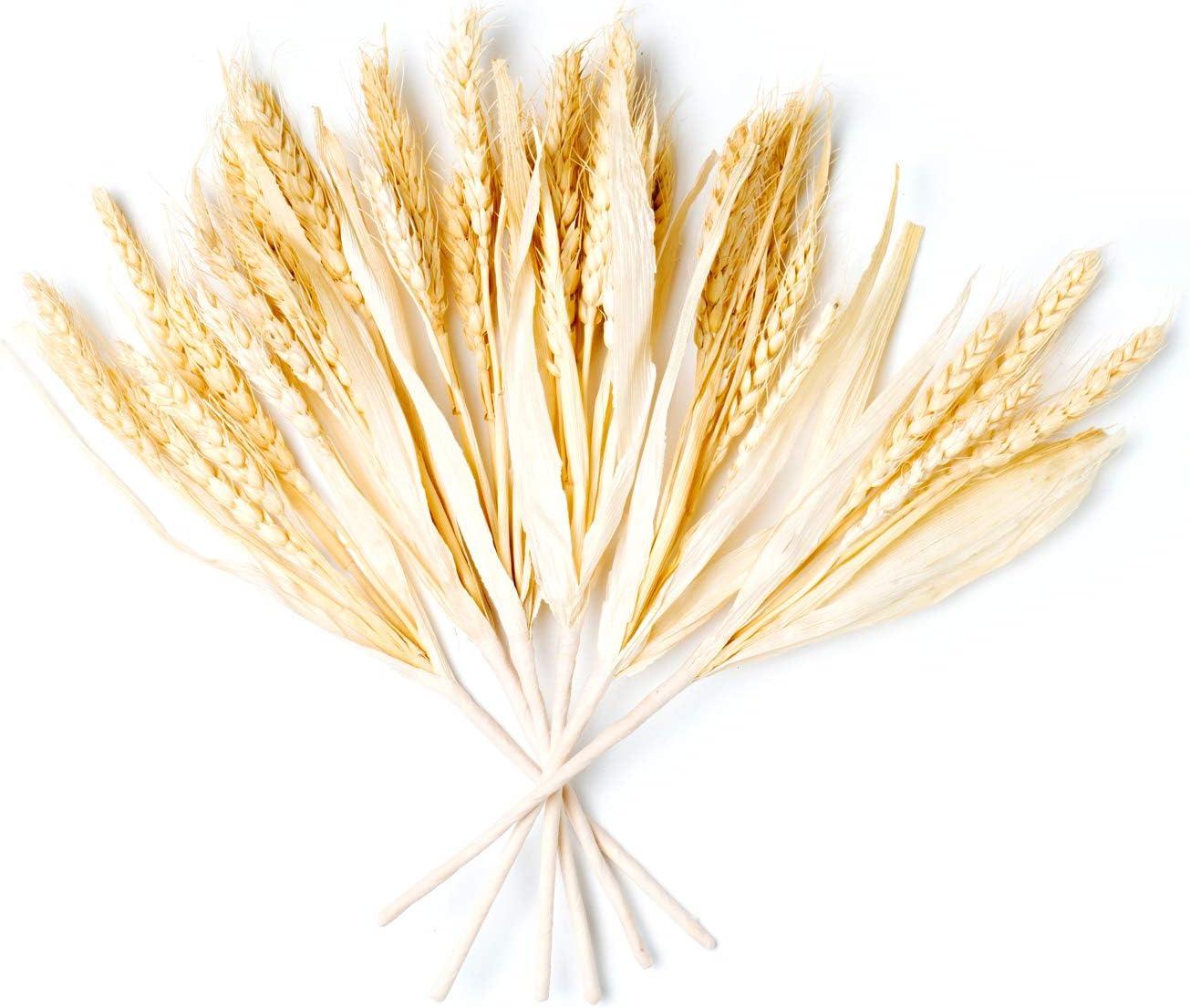 CraftMore Wheat Fall Pick Set of 6
