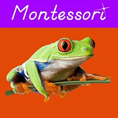 Animal Kingdom Vertebrates - Montessori Zoology