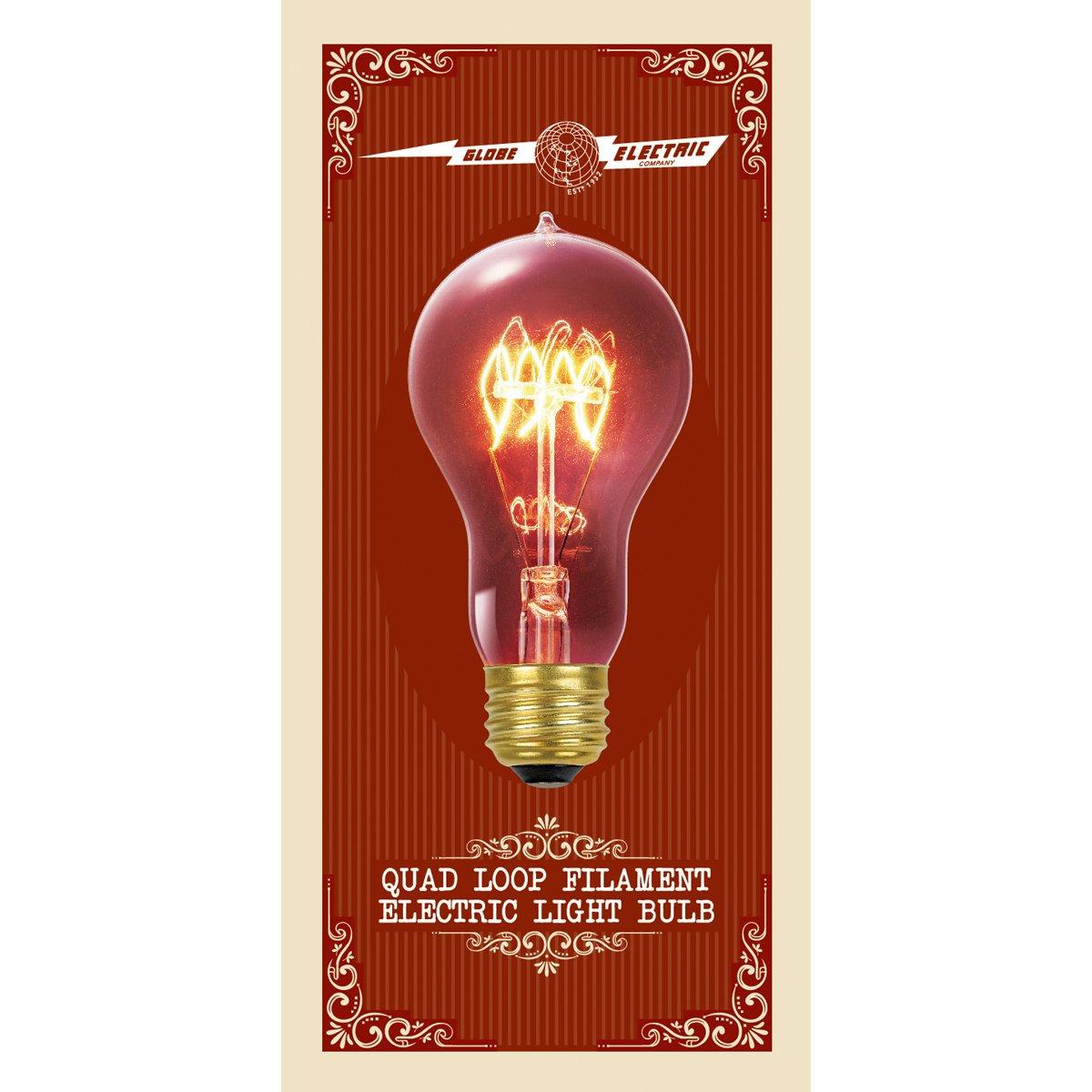 Globe Electric 60W Vintage Edison A19 Quad Loop Incandescent Filament Light  Bulb, E26 Base, 01325     Amazon.com