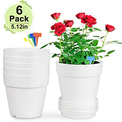 Farielyn-X 5.12 inch Plastic Flower Plant Pots/Container Indoor, White Set of 6 Planters, with Drainage Trays Modern Round Decorative Gardening Pot for All House Plants, Succulents, Flowers : Garden & Outdoor