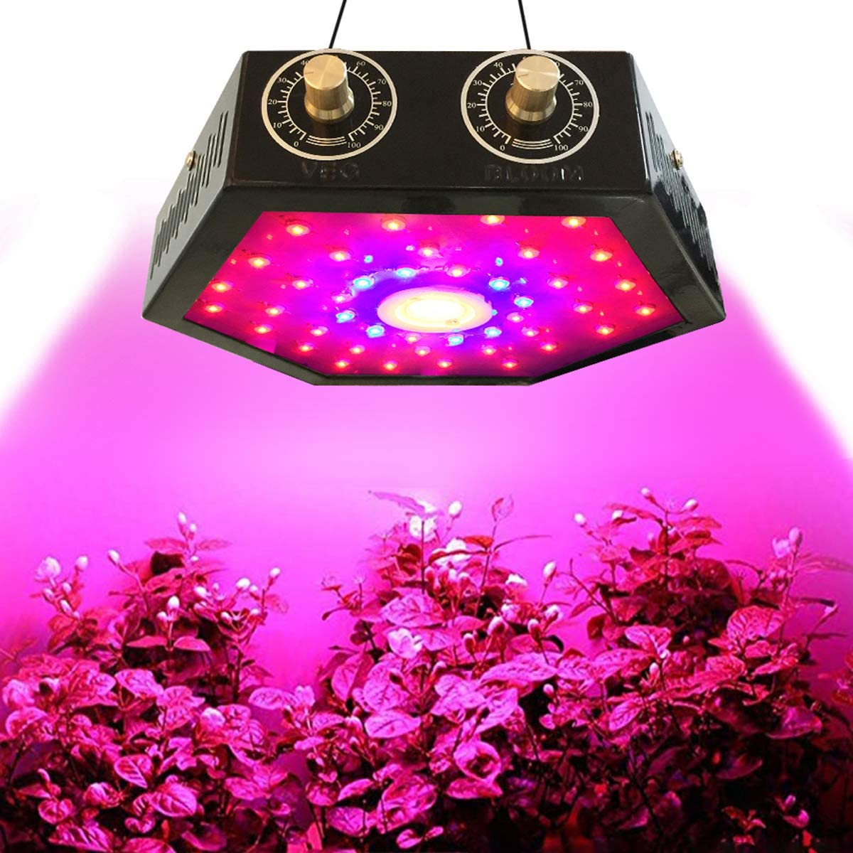 LED Plant Grow Lights Full Spectrum Plant Light Growing Lamps Double Adjustable Switch Veg and Bloom for Indoor Plant Greenhouse Basement Planting Succulent Plants Doub-chip 10W LEDs 1000W