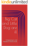 Big Cat and Little Dog are ill: A beginning to read Mandarin Chinese book (Beginning to read Mandarin Chinese with Big Cat and Little Dog 4) (English Edition)