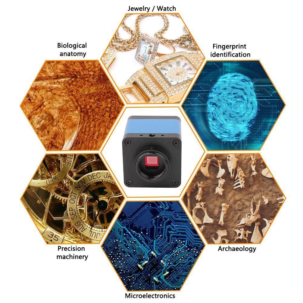 US Simlug 16 Million Pixel 60 Frame HDMI Electron Microscope HD Industrial Camera