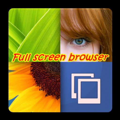 Full Screen Browser