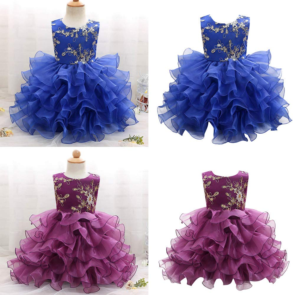 Lurryly Baby Girls Floral Dresses Clothes Sleeveless Princess Party Dress Outfit 2-6T