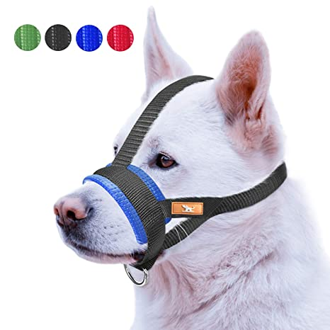 Amazon.com: Bozal para perro con correa para la nariz que ...
