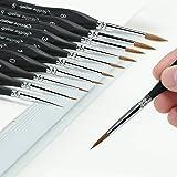 Miniature Sable Hair Detail Paint Brush Set - 10pcs Siberian Mink Artist Watercolor Brushes for Fine Detailing & Art…