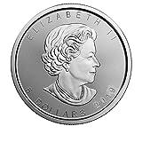 2019 1oz Silver Maple Leaf $5 Brilliant