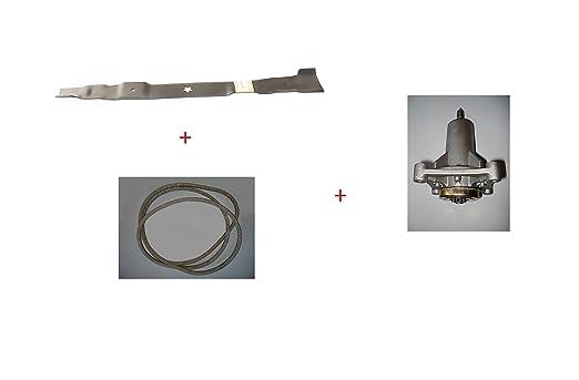 Kit de reparación de cortacésped AYP 77 cm, diseño de hoja, correa ...