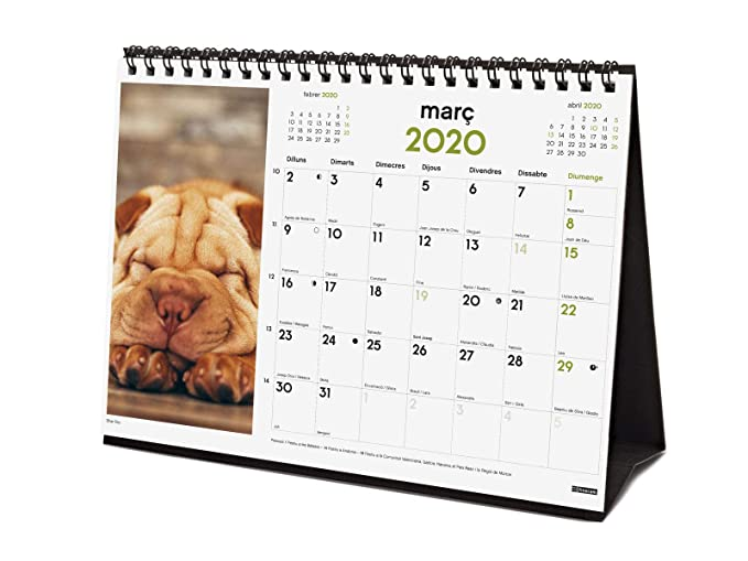 Amazon.com : Finocam - Desktop Calendar 2020 Images Catalan ...