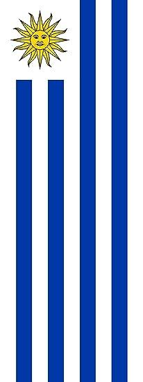 magFlags Bandera Uruguay | Bandera Vertical | 6m² | 400x150cm: Amazon.es: Hogar