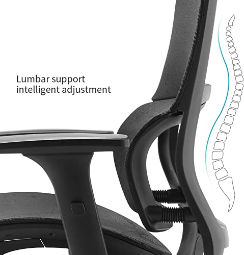 XUER Ergonomic Office Chair