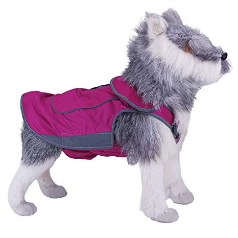 ThinkPet Chaqueta Perros Abrigo Perro Invierno Abrigo Forrado Impermeable con Copo de Nieve Sudadera Perro con