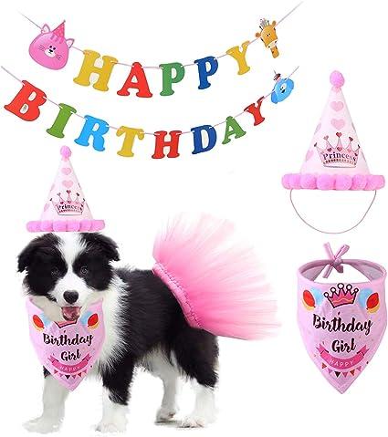 Amazon.com: Vehomy - Bandana de cumpleaños para perro, falda ...
