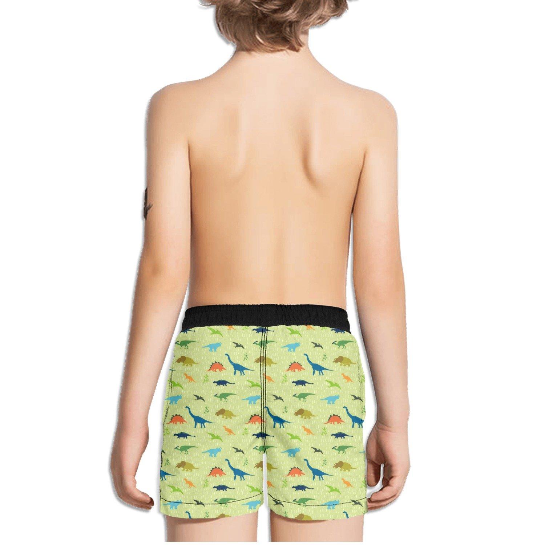 FullBo Dinosaur Party Little Boys Short Swim Trunks Quick Dry Beach Shorts