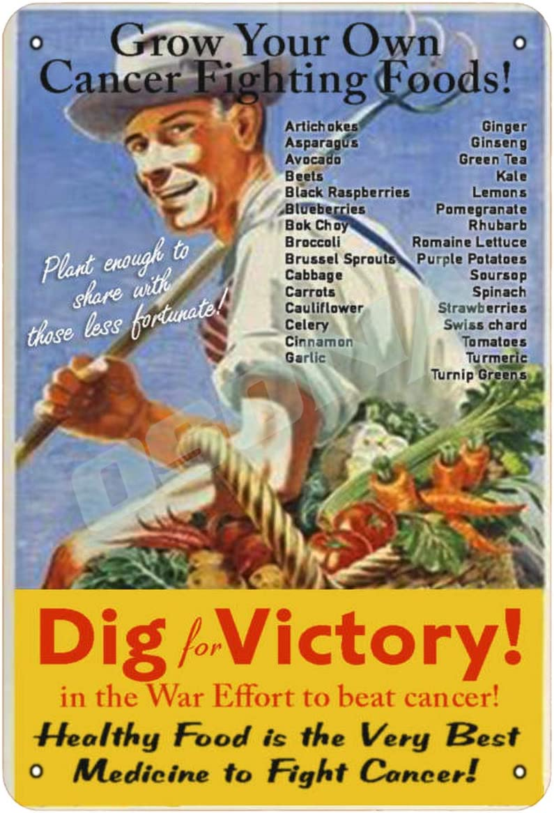 OSONA Dig for Victory Grow Your Own Cancer Fighting Foods Retro Nostalgic Traditional Rust Color Tin Logo Advertising Striking Wall Decoration Gift